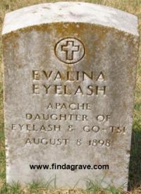 Evalina Eyelash