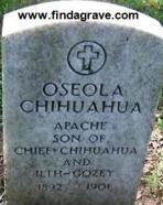 Oseola Chihuahua